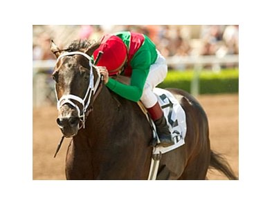 "Fairbanks heads a field of seven older horses in the Hawthorne Gold Cup Handicap.<br><a target=""blank"" href=""http://www.bloodhorse.com/horse-racing/photo-store?ref=http%3A%2F%2Fpictopia.com%2Fperl%2Fgal%3Fprovider_id%3D368%26ptp_photo_id%3D949150%26ref%3Dstory"">Order This Photo</a>"