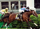 "Mr. Nightlander never looks back in the Aegon Turf Sprint.<br><a target=""blank"" href=""http://www.bloodhorse.com/horse-racing/photo-store?ref=http%3A%2F%2Fpictopia.com%2Fperl%2Fgal%3Fprovider_id%3D368%26ptp_photo_id%3D4376645%26ref%3Dstory"">Order This Photo</a>"