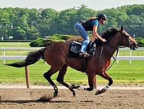 Big Brown working at Belmont Park on June 3.