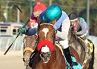 Goldencents won the Delta Jackpot at Delta Downs Nov. 17.