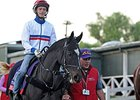 The Fugue at Santa Anita for the Breeders' Cup.