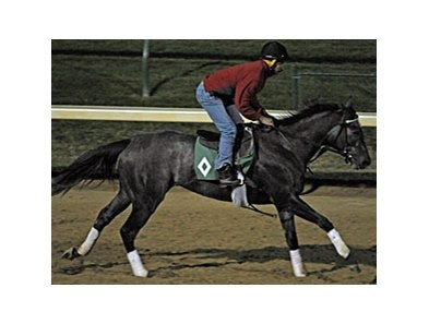 Unrivaled Belle