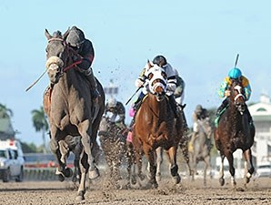 Goodtimehadbyall wins the 2013 Rapid Transit.