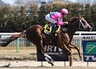 Cicada (gr. III) winner Carolyn's Cat will try to repeat that effort in the Nassau County (gr. III) May 3 at Belmont.