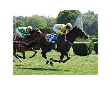Demonstrative winning the Turf Writers Cup.