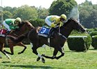 Iroquois Steeplechase Features Demonstrative
