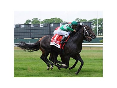 "Krypton is the 118 pound highweight in the Jamaica Handicap. <br><a target=""blank"" href=""http://www.bloodhorse.com/horse-racing/photo-store?ref=http%3A%2F%2Fpictopia.com%2Fperl%2Fgal%3Fprovider_id%3D368%26ptp_photo_id%3D9052669%26ref%3Dstory"">Order This Photo</a>"