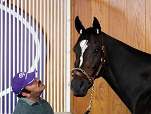 Zenyatta schools at Churchill Downs on Nov. 3, 2010.