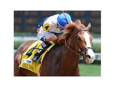 "Shackleford<br><a target=""blank"" href=""http://photos.bloodhorse.com/AtTheRaces-1/at-the-races-2012/22274956_jFd5jM#!i=1830263130&k=4LVf6fM"">Order This Photo</a>"