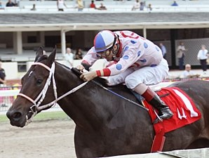 Tackleberry wins the 2010 Jack Dudley Sprint.