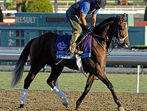 Know More at Santa Anita 10/29/2012.