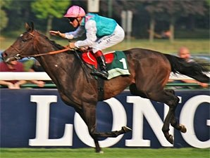 Flintshire On Target in Grand Prix de Paris