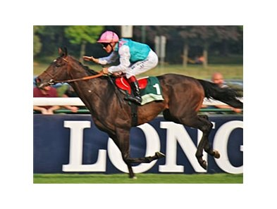 "Flintshire dominates the Juddmonte Grand Prix de Paris.<br><a target=""blank"" href=""http://photos.bloodhorse.com/AtTheRaces-1/at-the-races-2013/27257665_QgCqdh#!i=2632644741&k=d2c5n2K"">Order This Photo</a>"