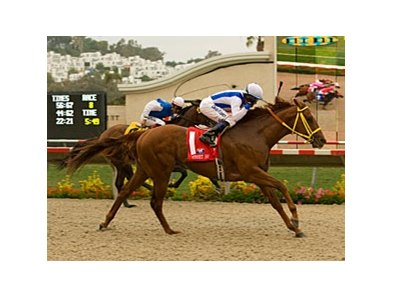 "Street Boss takes control in the Bing Crosby under David Flores. <br><a target=""blank"" href=""http://www.bloodhorse.com/horse-racing/photo-store?ref=http%3A%2F%2Fpictopia.com%2Fperl%2Fgal%3Fprovider_id%3D368%26ptp_photo_id%3D5295781%0D%0A%26ref%3Dstory"">Order This Photo</a>"