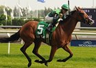 Bay to Bay won the Nassau Stakes on a yielding Woodbine turf course last month.