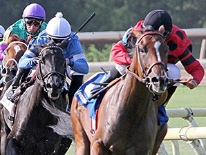 String King wins the 2013 Louisiana Cup Turf Classic Stakes.