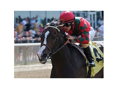 "Flat Out<br><a target=""blank"" href=""http://photos.bloodhorse.com/AtTheRaces-1/at-the-races-2013/27257665_QgCqdh#!i=2618572295&k=NXW8Jd6"">Order This Photo</a>"