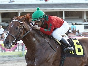 Birdrun wins the 2010 Carl G. Rose Classic.