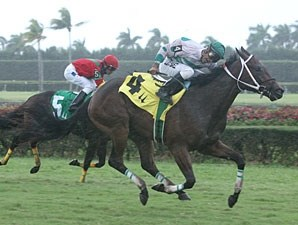Ayoumilove wins the 2010 Catcharisingstar.