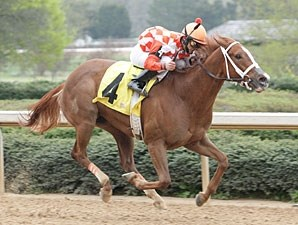 Just Jenda wins the 2009 Honey Bee.