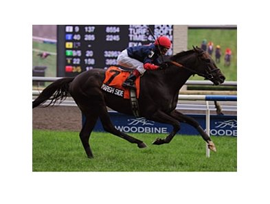 Marsh Side won the Sky Classic at Woodbine on August 22.