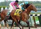 Calidoscopio