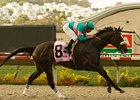"Zenyatta strolls to a Clement L. Hirsch win under Mike Smith.<br><a target=""blank"" href=""http://www.bloodhorse.com/horse-racing/photo-store?ref=http%3A%2F%2Fpictopia.com%2Fperl%2Fgal%3Fprovider_id%3D368%26ptp_photo_id%3D5371640%26ref%3Dstory"">Order This Photo</a>"