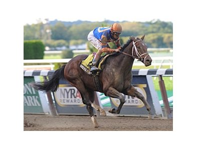 "Overanalyze will break from the outside in the Gotham.<br><a target=""blank"" href=""http://photos.bloodhorse.com/AtTheRaces-1/at-the-races-2012/22274956_jFd5jM#!i=2242437020&k=TVBS9PL"">Order This Photo</a>"