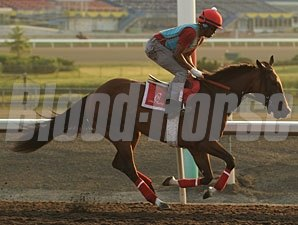 Dixie Strike - Woodbine June 19, 2012.