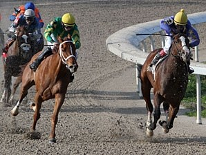 Valentine Eddie wins the 2013 South Mississippi Owners and Breeders Stakes.