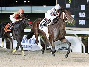 Star Guitars wins the 2009 Gold Cup Stakes.