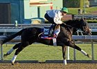 Slim Shadey