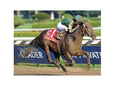 "Intangaroo came from far back in the pack to win the Ballerina (gr. I). <br><a target=""blank"" href=""http://www.bloodhorse.com/horse-racing/photo-store?ref=http%3A%2F%2Fpictopia.com%2Fperl%2Fgal%3Fprovider_id%3D368%26ptp_photo_id%3D5646255%0D%0A%26ref%3Dstory"">Order This Photo</a>"