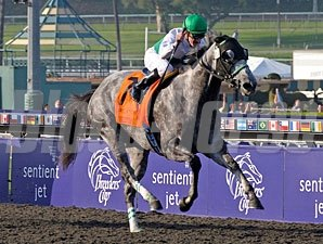 Informed Decision wins the 2009 Breeders' Cup Filly & Mare Sprint.
