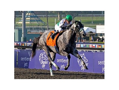 "Informed Decision<br><a target=""blank"" href=""http://www.bloodhorse.com/horse-racing/photo-store?ref=http%3A%2F%2Fpictopia.com%2Fperl%2Fgal%3Fprovider_id%3D368%26ptp_photo_id%3D8609226%26ref%3Dstory"">Order This Photo</a>"