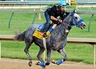 "Creative Cause<br><a target=""blank"" href=""http://photos.bloodhorse.com/TripleCrown/2012-Triple-Crown/Works/22611108_LR3wcn#!i=1827793064&k=R3QjZ5T"">Order This Photo</a>"