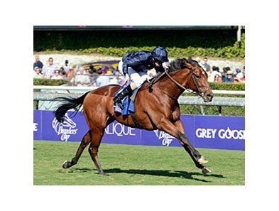 "George Vancouver sweeps to victory in the Breeders' Cup Juvenile Turf.<br><a target=""blank"" href=""http://photos.bloodhorse.com/BreedersCup/2012-Breeders-Cup/Juvenile-Turf/26130158_gHJcdg#!i=2192652198&k=V2b72DJ"">Order This Photo</a>"
