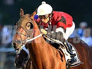 Snappy Girl wins the 2014 Louisiana Legends Mademoiselle Stakes.
