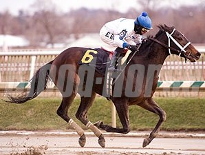 That's How I Roll ridden by Erick Rodriguez wins the $50,000 Maryland Filly Championship  for three-year-old fillies at Laurel Park in Maryland on Friday, Jan. 1, 2010.