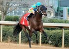 Riley Tucker won the King Cotton Stakes at Oaklawn Park in January.