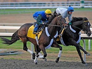 Blame and Apart work towards the Breeders' Cup Oct. 24, 2010.