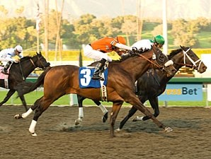 Cowboy Cal wins the 2009 San Pasqual.