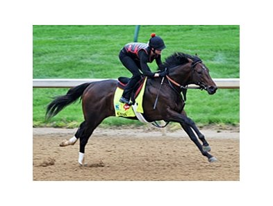 "Orb was clocked in :47 4/5 for four furlongs.<br><a target=""blank"" href=""http://photos.bloodhorse.com/TripleCrown/2013-Triple-Crown/Kentucky-Derby-Workouts/29026796_jvcnn8#!i=2484480991&k=TBnhfSF"">Order This Photo</a>"