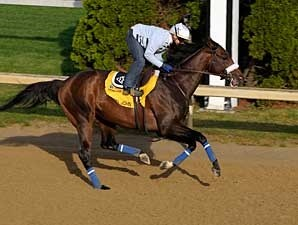Colonel John during his April 27 work at Churchill Downs.