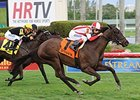 Brown Sends Two West for American Oaks