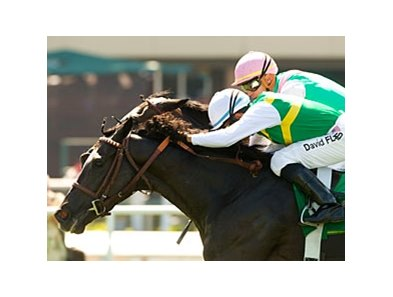 "Diamond Diva<br><a target=""blank"" href=""http://www.bloodhorse.com/horse-racing/photo-store?ref=http%3A%2F%2Fpictopia.com%2Fperl%2Fgal%3Fprovider_id%3D368%26ptp_photo_id%3D5037128%26ref%3Dstory"">Order This Photo</a>"
