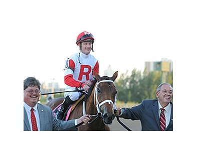 Major Marvel at the 2013 Claiming Crown.