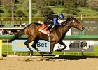"Bob Black Jack's owners are considering running the Santa Anita Derby (gr. I) runner-up in the Kentucky Derby (gr. I). <br><a target=""blank"" href=""http://www.bloodhorse.com/horse-racing/photo-store?ref=http%3A%2F%2Fpictopia.com%2Fperl%2Fgal%3Fprovider_id%3D368%26ptp_photo_id%3D3399818%26ref%3Dstory"">Order This Photo</a>"