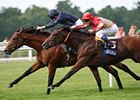 "Duke of Marmalade (left) holds off Papal Bull to take the King George VI and Queen Elizabeth Stakes.<br><a target=""blank"" href=""http://www.bloodhorse.com/horse-racing/photo-store?ref=http%3A%2F%2Fpictopia.com%2Fperl%2Fgal%3Fprovider_id%3D368%26ptp_photo_id%3D5274886%26ref%3Dstory"">Order This Photo</a>"