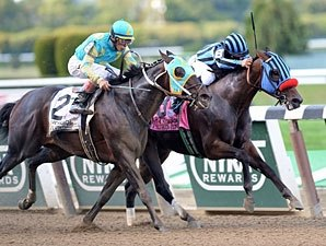 CA Invader Private Zone Lands Vosburgh